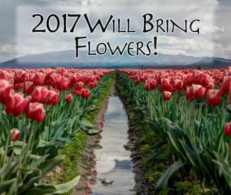 2017-will-bring-flowers-Monday-Motivation